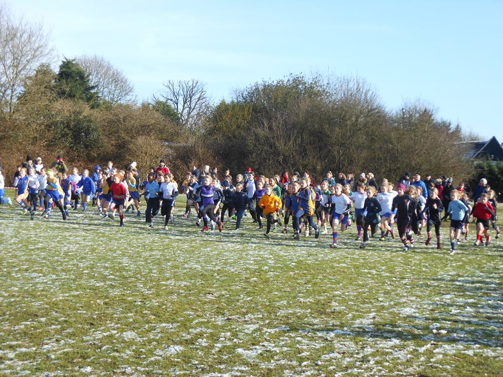 ISA Regional X Country 6
