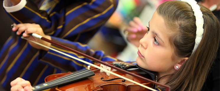 Violin Panel 201415